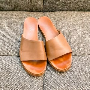 Brown Slides